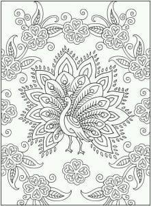 павлин картинка раскраска18