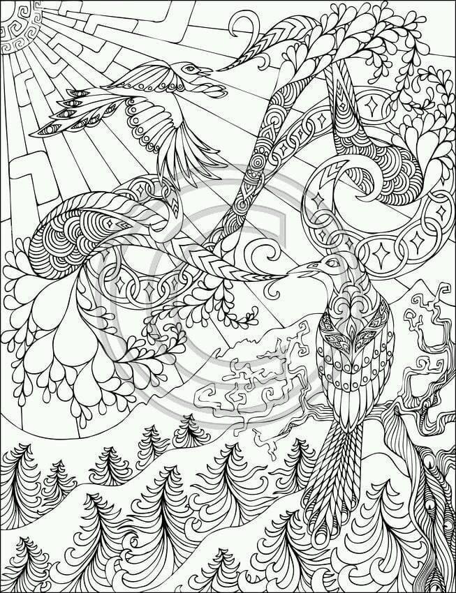 павлин картинка раскраска5