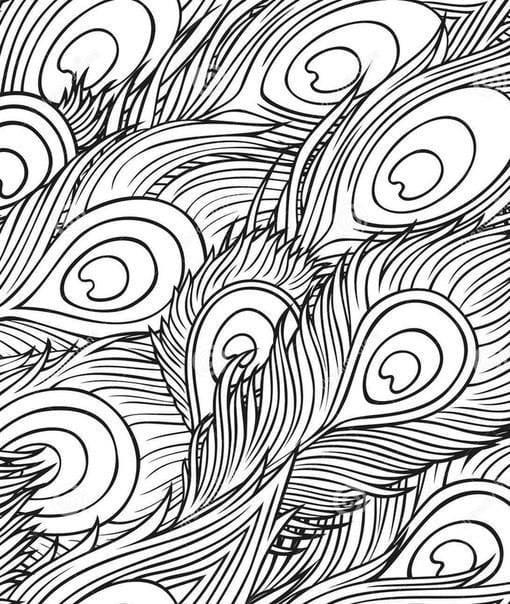 павлин картинка раскраска54