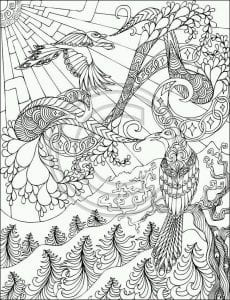 павлин картинка раскраска6
