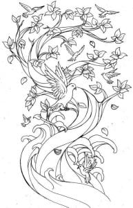 павлин картинка раскраска61