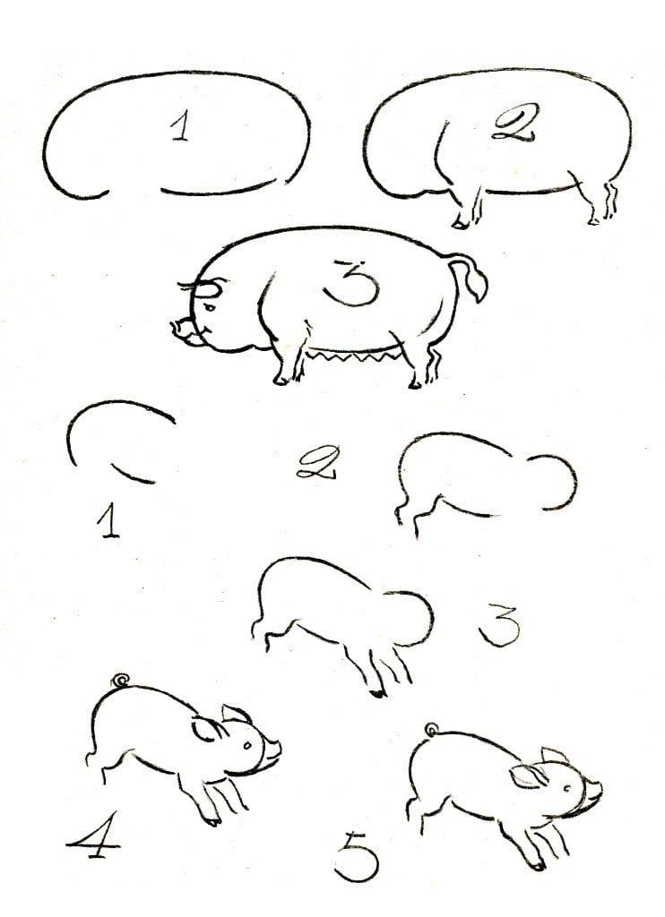 как нарисовать свинью и поросят