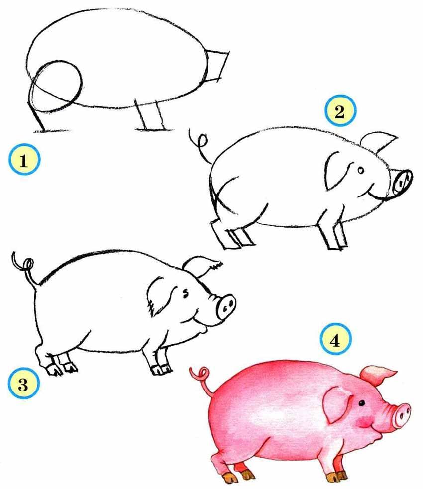 Как нарисовать свинью поэтапно
