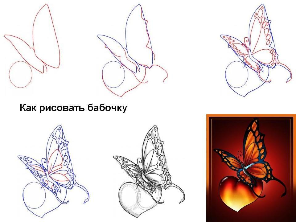 Бабочка и листик нарисовать