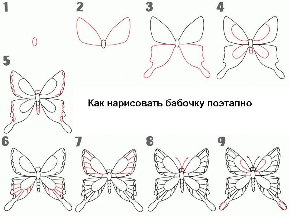 Бабочки нарисовать