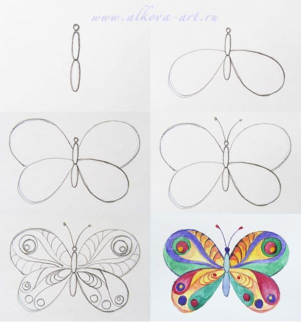 рисуем поэтапно бабочку