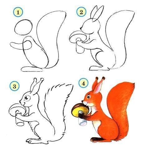 -с-грибом Как нарисовать белку