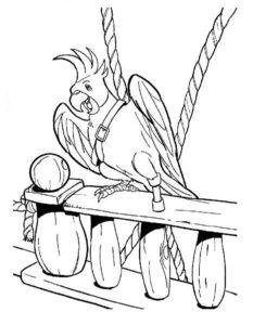 Пираты картинки раскраски (28)