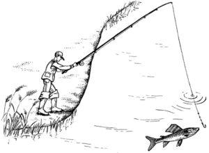 Рыбалка картинки раскраски (1)