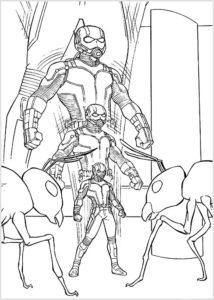 Человек муравей картинки раскраски (12)