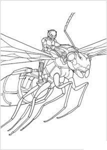 Человек муравей картинки раскраски (8)