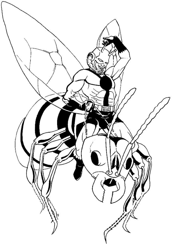 Картинка человек муравей раскраска