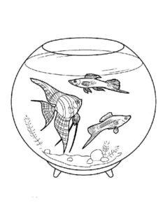 -с-рыбками-картинки-раскраски-10-233x300 Аквариум с рыбками