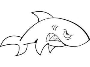 Акула картинки раскраски (11)
