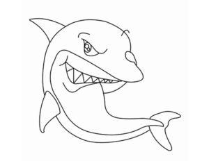 Акула картинки раскраски (21)