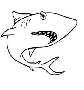 Акула картинки раскраски (23)