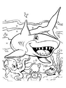 Акула картинки раскраски (25)