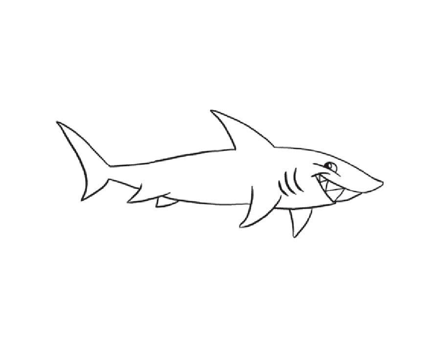 Акула картинки раскраски (4) - Рисовака