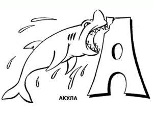 Акула картинки раскраски (5)