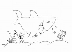 Акула картинки раскраски (50)