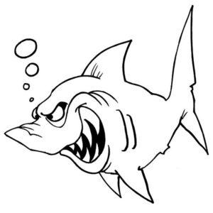 Акула картинки раскраски (53)