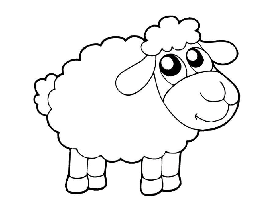 Картинки овечек