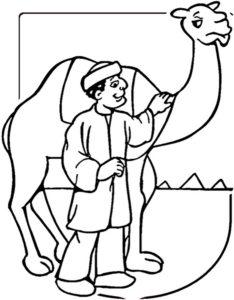 Верблюд картинки раскраски (20)