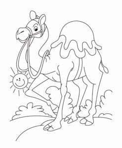Верблюд картинки раскраски (39)