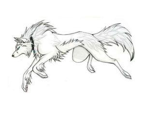 Волк картинки раскраски (1)