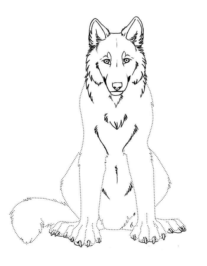 волк картинки раскраски 5 рисовака