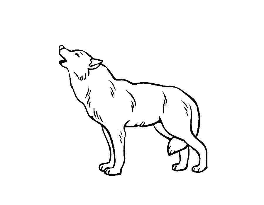 картинки для раскраски волка шведам