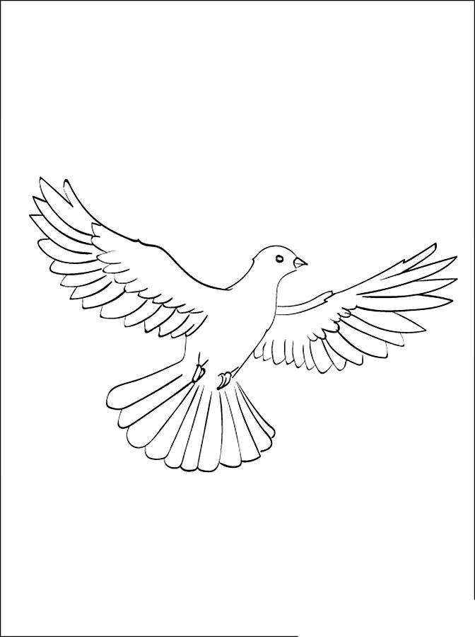 рисунки для раскрашивания голуби если настроение плохое