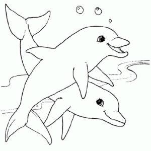 Дельфин картинки раскраски (1)
