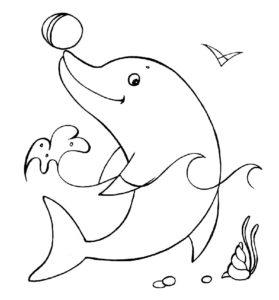Дельфин картинки раскраски (2)