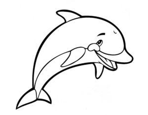 Дельфин картинки раскраски (27)