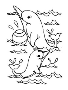 Дельфин картинки раскраски (39)