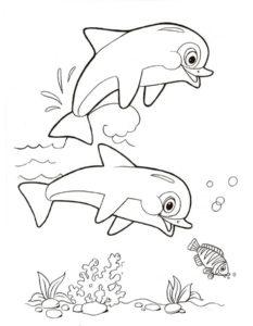 Дельфин картинки раскраски (6)
