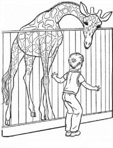 Дикие животные картинки раскраски (1)