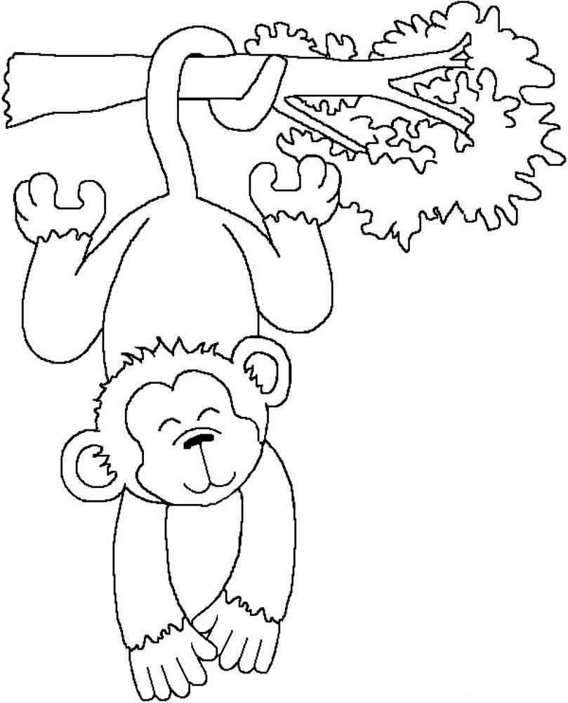 Дикие животные картинки раскраски (15)