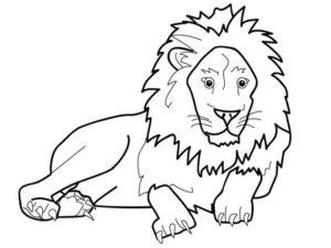 Дикие животные картинки раскраски (27)