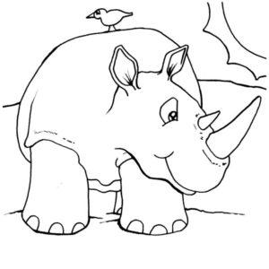 Дикие животные картинки раскраски (29)