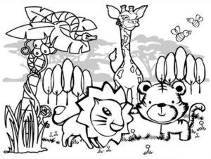 Дикие животные картинки раскраски (6)