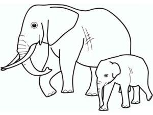Дикие животные картинки раскраски (9)