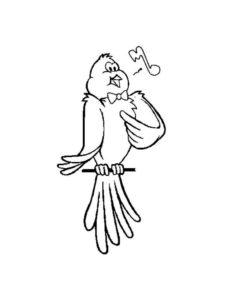 Домашние птицы и их птенцы картинки раскраски (14)
