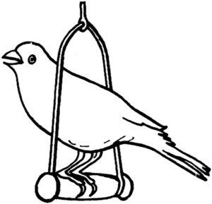 Домашние птицы и их птенцы картинки раскраски (2)