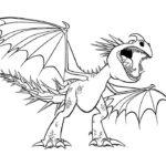 Дракон картинки раскраски (5)