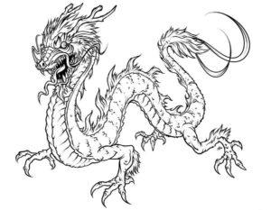 Дракон картинки раскраски (6)