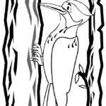Дятел картинки раскраски (3)