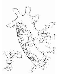-картинки-раскраски-1-233x300 Жираф