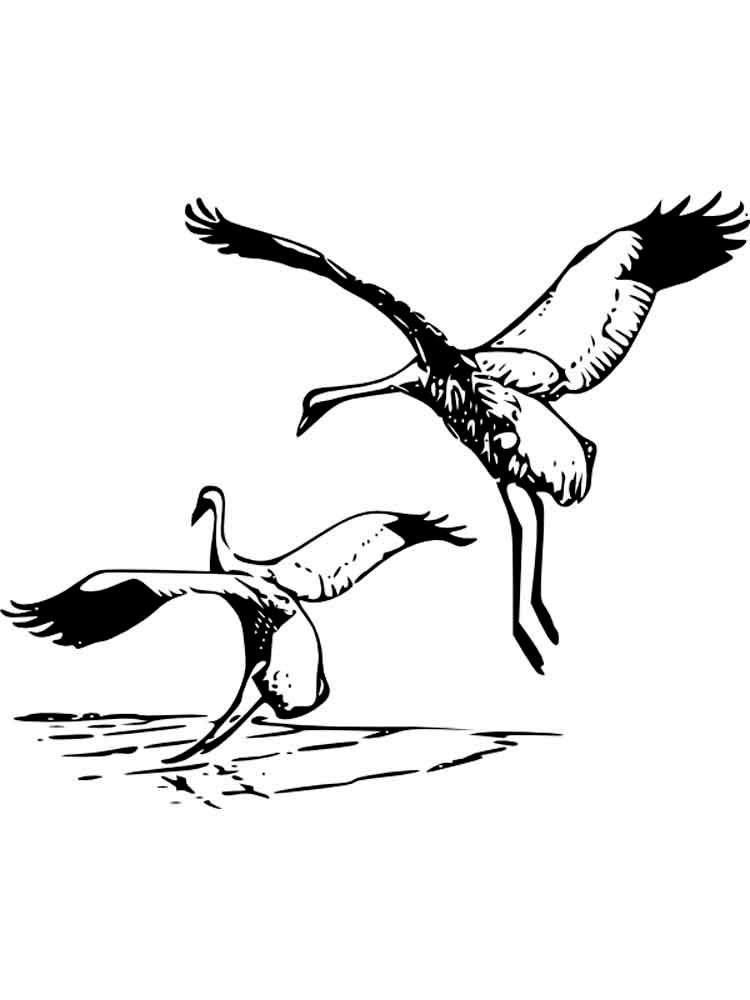 рисунок журавлей летящих лестницы